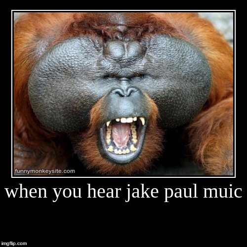 when you hear jake paul muic | | image tagged in funny,demotivationals | made w/ Imgflip demotivational maker