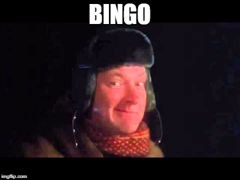 BINGO | image tagged in bingo | made w/ Imgflip meme maker