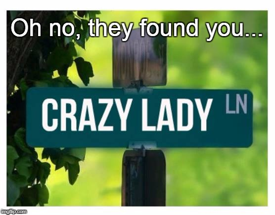 They found you... | Oh no, they found you... | image tagged in oh no,crazy lady,robin | made w/ Imgflip meme maker