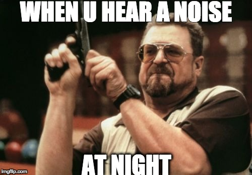 Am I The Only One Around Here Meme | WHEN U HEAR A NOISE AT NIGHT | image tagged in memes,am i the only one around here | made w/ Imgflip meme maker