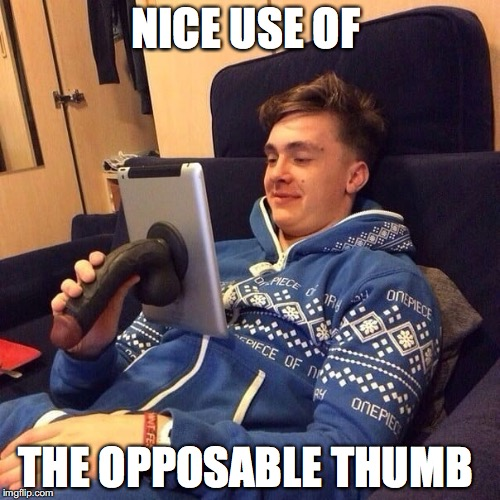 NICE USE OF THE OPPOSABLE THUMB | image tagged in dick tablet | made w/ Imgflip meme maker