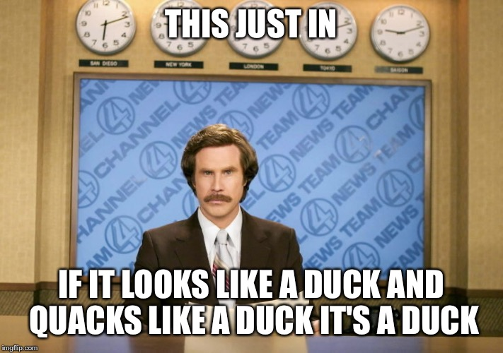 THIS JUST IN IF IT LOOKS LIKE A DUCK AND QUACKS LIKE A DUCK IT'S A DUCK | made w/ Imgflip meme maker