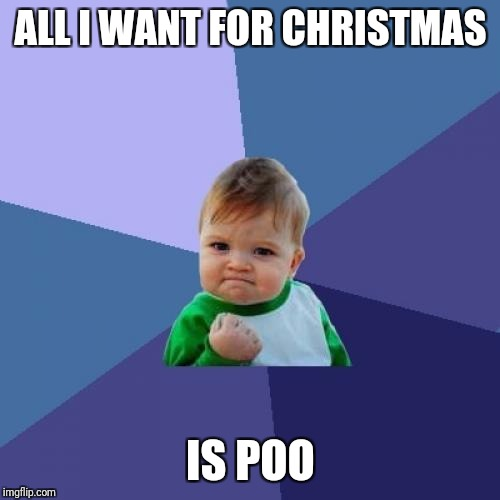 Success Kid Meme | ALL I WANT FOR CHRISTMAS IS POO | image tagged in memes,success kid | made w/ Imgflip meme maker