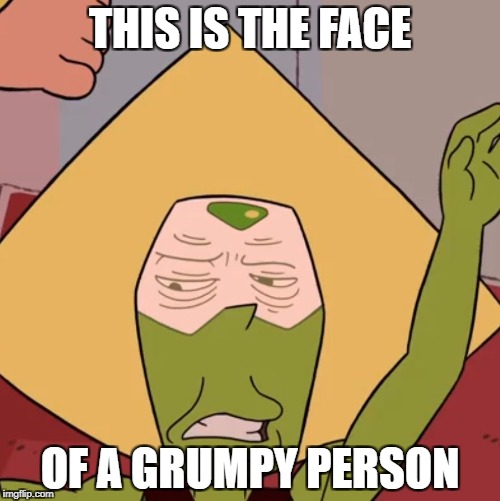 THIS IS THE FACE OF A GRUMPY PERSON | image tagged in gump-dot | made w/ Imgflip meme maker