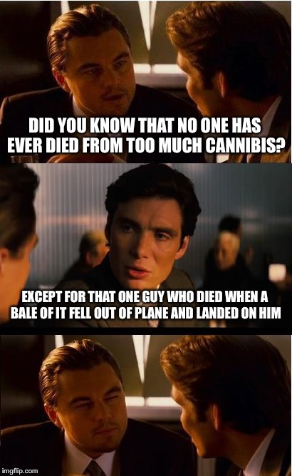 Statistics Mean Nothing to the Individual | DID YOU KNOW THAT NO ONE HAS EVER DIED FROM TOO MUCH CANNIBIS? EXCEPT FOR THAT ONE GUY WHO DIED WHEN A BALE OF IT FELL OUT OF PLANE AND LAND | image tagged in memes,inception,cannabis,overdose | made w/ Imgflip meme maker