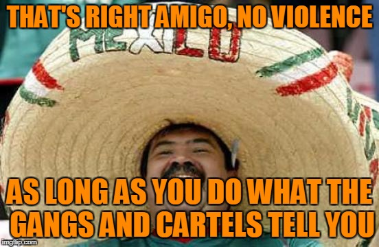 THAT'S RIGHT AMIGO, NO VIOLENCE AS LONG AS YOU DO WHAT THE GANGS AND CARTELS TELL YOU | made w/ Imgflip meme maker