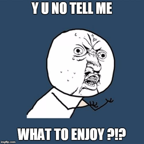 Y U No Meme | Y U NO TELL ME WHAT TO ENJOY ?!? | image tagged in memes,y u no | made w/ Imgflip meme maker