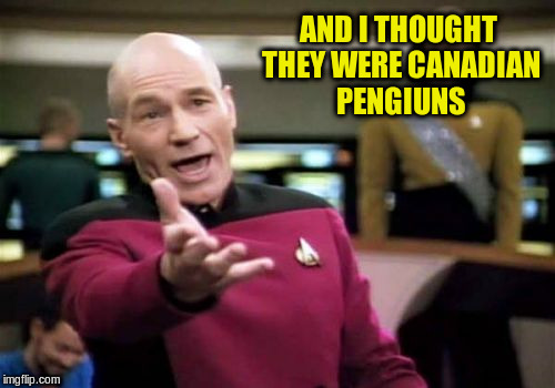 Picard Wtf Meme | AND I THOUGHT THEY WERE CANADIAN PENGIUNS | image tagged in memes,picard wtf | made w/ Imgflip meme maker