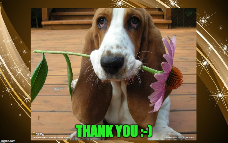 THANK YOU :-) | made w/ Imgflip meme maker