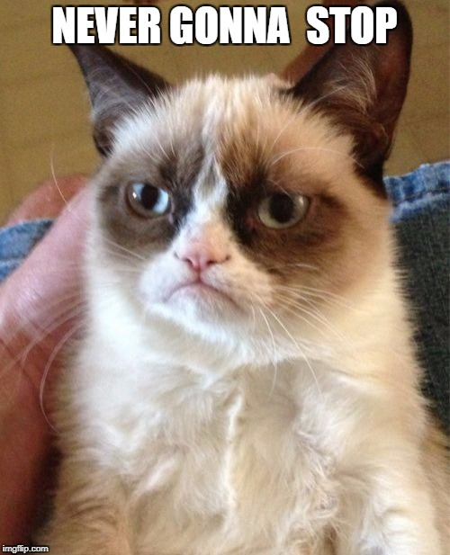 Grumpy Cat Meme | NEVER GONNA  STOP | image tagged in memes,grumpy cat | made w/ Imgflip meme maker