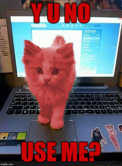 RayCat blocking monitor | Y U NO USE ME? | image tagged in raycat blocking monitor | made w/ Imgflip meme maker