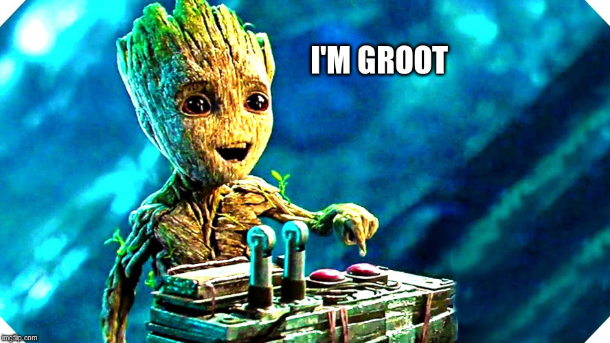 I'M GROOT | made w/ Imgflip meme maker