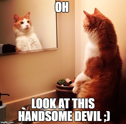 OH LOOK AT THIS HANDSOME DEVIL ;) | image tagged in woah iz me | made w/ Imgflip meme maker