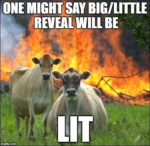 Evil Cows Meme | ONE MIGHT SAY BIG/LITTLE REVEAL WILL BE LIT | image tagged in memes,evil cows | made w/ Imgflip meme maker