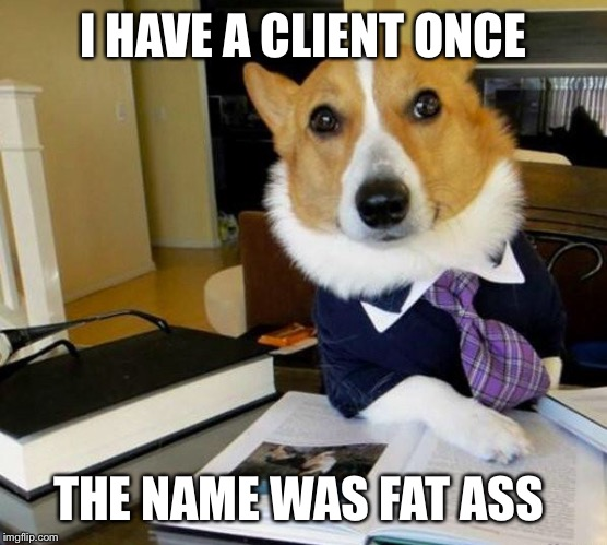 Lawyer Corgi Dog | I HAVE A CLIENT ONCE THE NAME WAS FAT ASS | image tagged in lawyer corgi dog | made w/ Imgflip meme maker