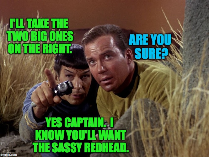 Teamwork takes selflessness and an awareness of each other's strengths. | I'LL TAKE THE TWO BIG ONES ON THE RIGHT. YES CAPTAIN.  I KNOW YOU'LL WANT THE SASSY REDHEAD. ARE YOU SURE? | image tagged in spock and kirk,memes,teamwork,star trek | made w/ Imgflip meme maker