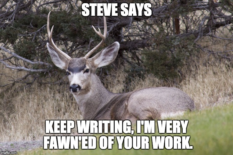 STEVE SAYS KEEP WRITING, I'M VERY FAWN'ED OF YOUR WORK. | image tagged in steve says | made w/ Imgflip meme maker