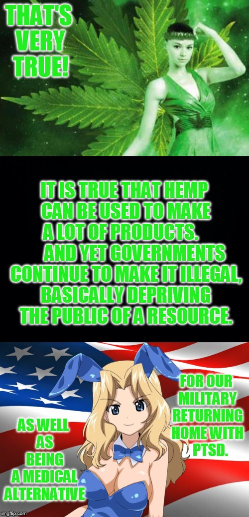 THAT'S VERY TRUE! AS WELL AS BEING A MEDICAL ALTERNATIVE IT IS TRUE THAT HEMP CAN BE USED TO MAKE A LOT OF PRODUCTS.         AND YET GOVERNM | made w/ Imgflip meme maker