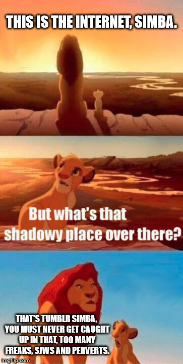 Simba Shadowy Place Meme | THIS IS THE INTERNET, SIMBA. THAT'S TUMBLR SIMBA, YOU MUST NEVER GET CAUGHT UP IN THAT, TOO MANY FREAKS, SJWS AND PERVERTS. | image tagged in memes,simba shadowy place | made w/ Imgflip meme maker
