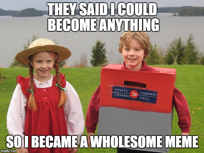 Mail boy achieves goals | THEY SAID I COULD BECOME ANYTHING SO I BECAME A WHOLESOME MEME | image tagged in wholesome,meme | made w/ Imgflip meme maker