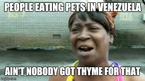 Aint Nobody Got Time For That Meme | PEOPLE EATING PETS IN VENEZUELA AIN'T NOBODY GOT THYME FOR THAT | image tagged in memes,aint nobody got time for that | made w/ Imgflip meme maker