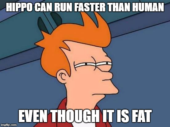Futurama Fry Meme | HIPPO CAN RUN FASTER THAN HUMAN EVEN THOUGH IT IS FAT | image tagged in memes,futurama fry | made w/ Imgflip meme maker