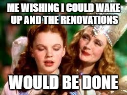 wizard of oz | ME WISHING I COULD WAKE UP AND THE RENOVATIONS WOULD BE DONE | image tagged in wizard of oz | made w/ Imgflip meme maker