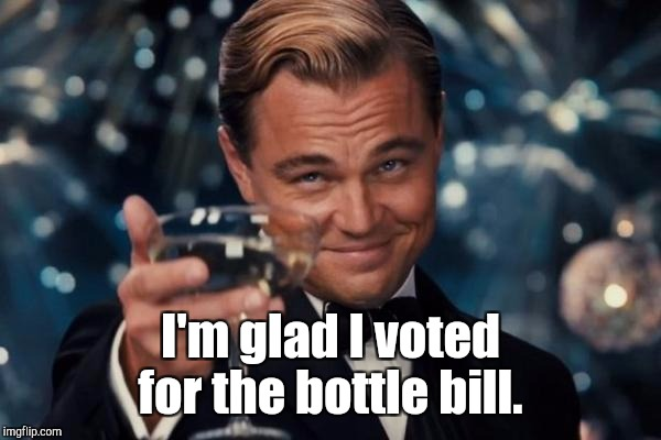 Leonardo Dicaprio Cheers Meme | I'm glad I voted for the bottle bill. | image tagged in memes,leonardo dicaprio cheers | made w/ Imgflip meme maker