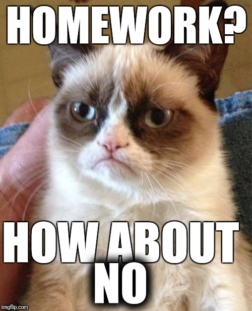 Grumpy Cat Meme | HOMEWORK? HOW ABOUT NO | image tagged in memes,grumpy cat | made w/ Imgflip meme maker