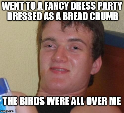 10 Guy Meme | WENT TO A FANCY DRESS PARTY DRESSED AS A BREAD CRUMB THE BIRDS WERE ALL OVER ME | image tagged in memes,10 guy | made w/ Imgflip meme maker