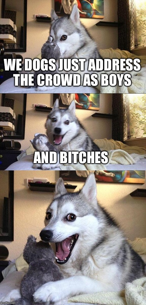 Bad Pun Dog Meme | WE DOGS JUST ADDRESS THE CROWD AS BOYS AND B**CHES | image tagged in memes,bad pun dog | made w/ Imgflip meme maker
