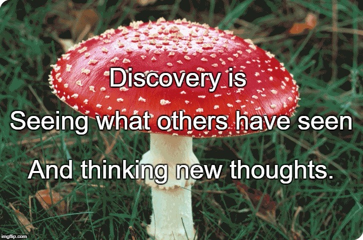 Discovery | Discovery is And thinking new thoughts. Seeing what others have seen | image tagged in discovery | made w/ Imgflip meme maker