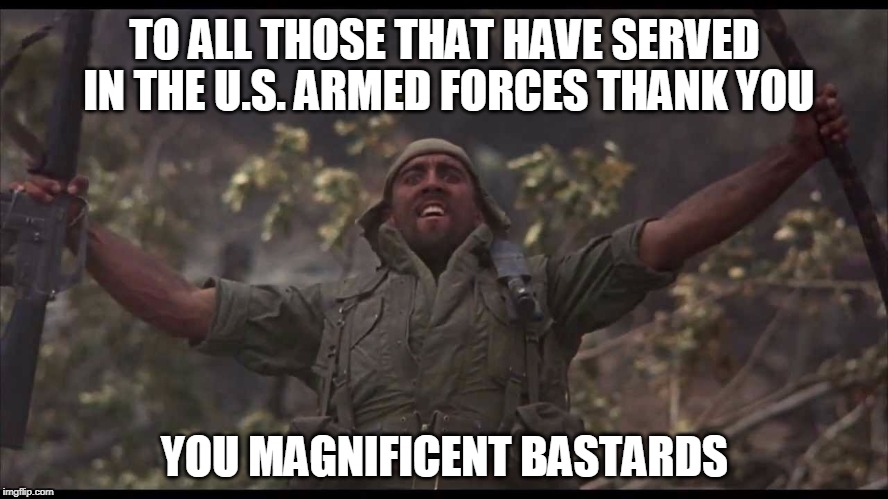 Happy Veterans Day | TO ALL THOSE THAT HAVE SERVED IN THE U.S. ARMED FORCES THANK YOU YOU MAGNIFICENT BASTARDS | image tagged in veterans day,veterans | made w/ Imgflip meme maker