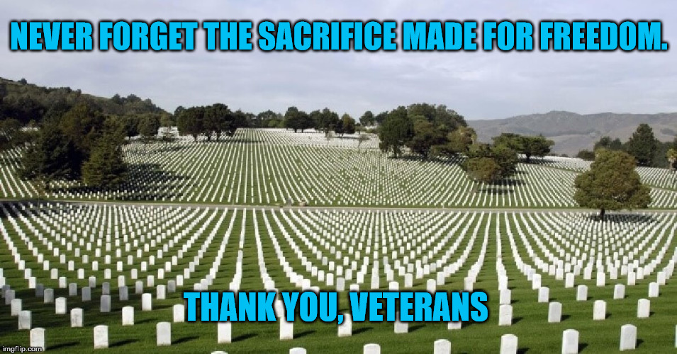 Veterans Day 2017 | NEVER FORGET THE SACRIFICE MADE FOR FREEDOM. THANK YOU, VETERANS | image tagged in arlington,veterans,service | made w/ Imgflip meme maker