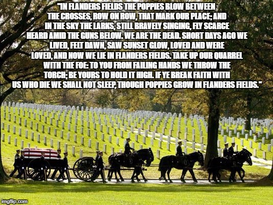 """IN FLANDERS FIELDS THE POPPIES BLOW BETWEEN THE CROSSES, ROW ON ROW, THAT MARK OUR PLACE; AND IN THE SKY THE LARKS, STILL BRAVELY SINGING,  