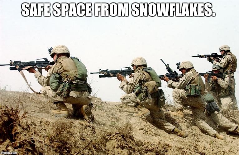 soldiers | SAFE SPACE FROM SNOWFLAKES. | image tagged in soldiers | made w/ Imgflip meme maker
