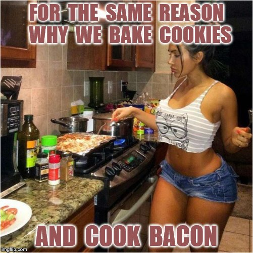 FOR  THE  SAME  REASON  WHY  WE  BAKE  COOKIES AND  COOK  BACON | made w/ Imgflip meme maker