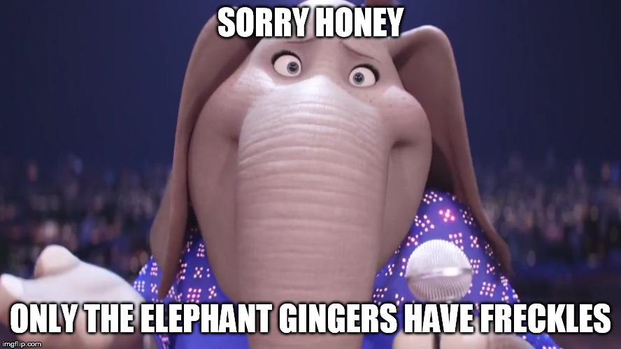 SORRY HONEY ONLY THE ELEPHANT GINGERS HAVE FRECKLES | made w/ Imgflip meme maker