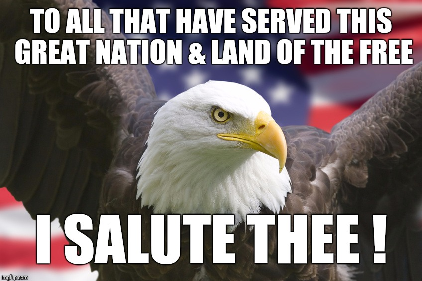 Thank you, Veterans! | TO ALL THAT HAVE SERVED THIS GREAT NATION & LAND OF THE FREE I SALUTE THEE ! | image tagged in veterans,veterans day,veteran,veteran nation,freedom | made w/ Imgflip meme maker