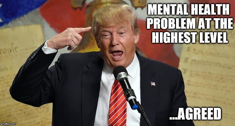 MENTAL HEALTH PROBLEM AT THE HIGHEST LEVEL ...AGREED | image tagged in texas church,trump,nra,mental illness | made w/ Imgflip meme maker