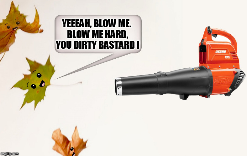 YEEEAH, BLOW ME. BLOW ME HARD, YOU DIRTY BASTARD ! | image tagged in leaf blower,autumn,blowjob,blow job,autumn leaves,oral sex | made w/ Imgflip meme maker