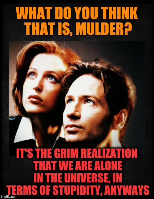 Mulder and Scully gaze to whatever,,, | WHAT DO YOU THINK THAT IS, MULDER? IT'S THE GRIM REALIZATION THAT WE ARE ALONE IN THE UNIVERSE, IN TERMS OF STUPIDITY, ANYWAYS | image tagged in mulder and scully gaze to whatever | made w/ Imgflip meme maker