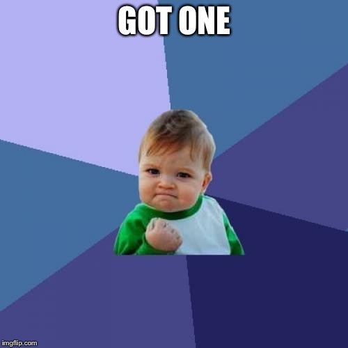 Success Kid Meme | GOT ONE | image tagged in memes,success kid | made w/ Imgflip meme maker