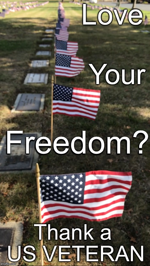 Thank a Vet | Love Thank a US VETERAN Your Freedom? | image tagged in veterans,veterans day,memorial day | made w/ Imgflip meme maker