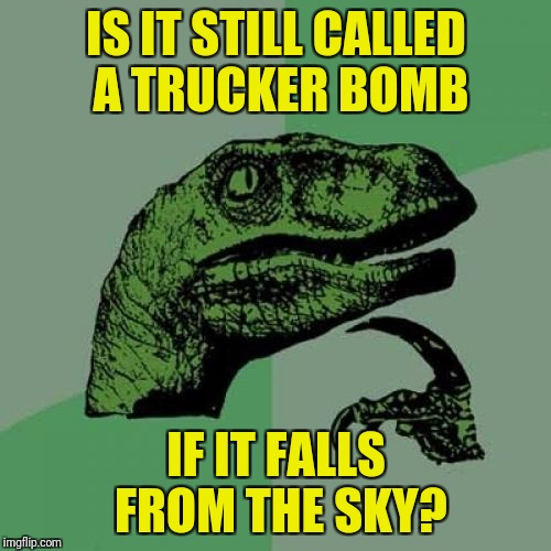 Philosoraptor Meme | IS IT STILL CALLED A TRUCKER BOMB IF IT FALLS FROM THE SKY? | image tagged in memes,philosoraptor | made w/ Imgflip meme maker