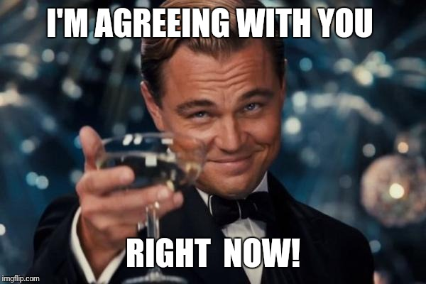 Leonardo Dicaprio Cheers Meme | I'M AGREEING WITH YOU RIGHT  NOW! | image tagged in memes,leonardo dicaprio cheers | made w/ Imgflip meme maker