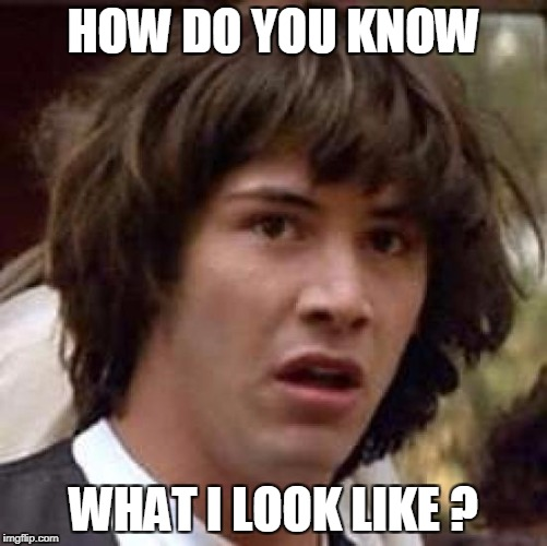Conspiracy Keanu Meme | HOW DO YOU KNOW WHAT I LOOK LIKE ? | image tagged in memes,conspiracy keanu | made w/ Imgflip meme maker