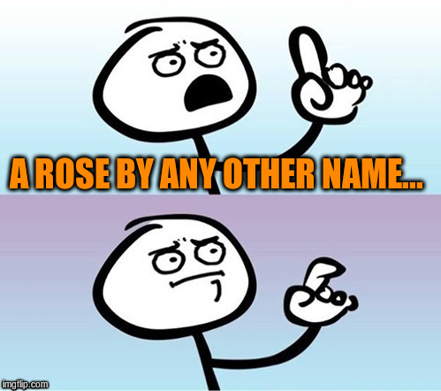 A ROSE BY ANY OTHER NAME... | made w/ Imgflip meme maker