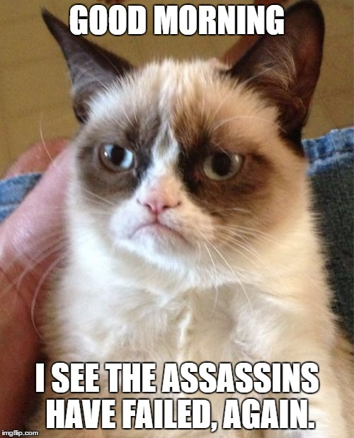 Grumpy Cat Meme | GOOD MORNING I SEE THE ASSASSINS HAVE FAILED, AGAIN. | image tagged in memes,grumpy cat | made w/ Imgflip meme maker