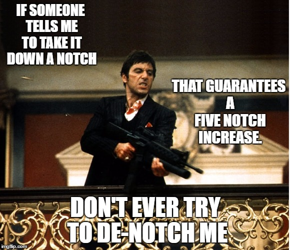 scarface | IF SOMEONE TELLS ME TO TAKE IT DOWN A NOTCH DON'T EVER TRY TO DE-NOTCH ME THAT GUARANTEES A FIVE NOTCH INCREASE. | image tagged in scarface | made w/ Imgflip meme maker